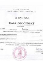Diplom ekonomie a management - Vysoká škola - Bc. Radek Opočenský - Matějova hypotéka